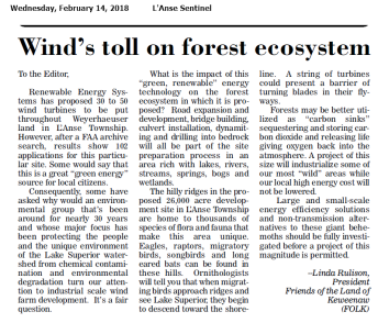 Wind's toll on forest ecosystems.