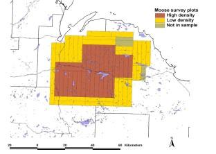 Moose Population Map