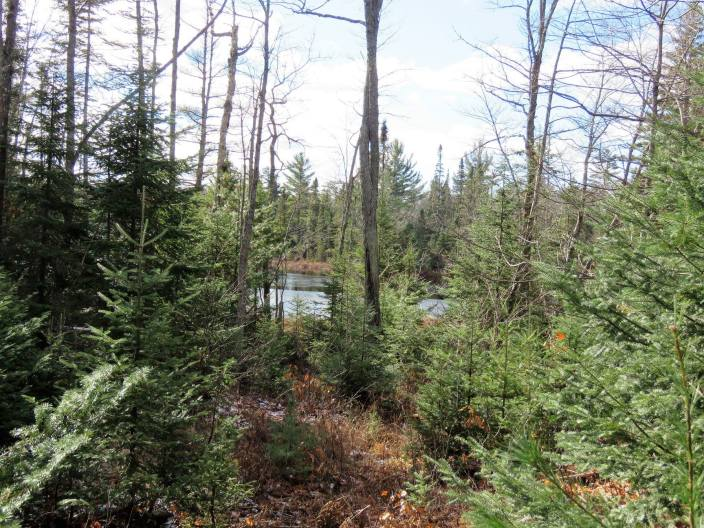 View of Lake through the trees. Located across the Trail from Turbine 18 proposed Location, off of The Peshekee Grade. Image Credit Nancy Haun